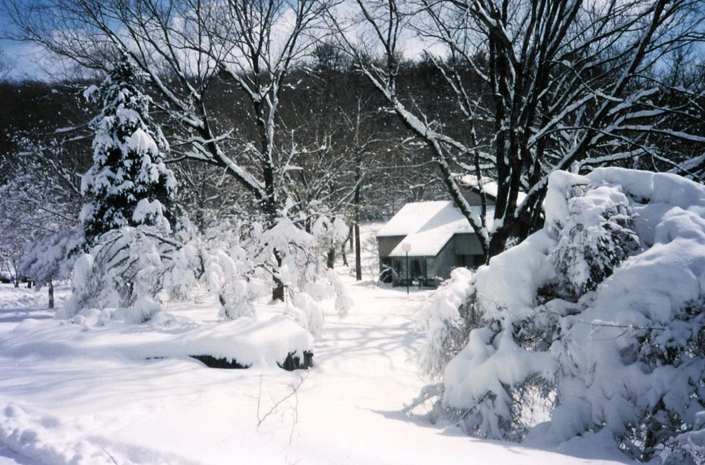 Blizzard February 1993
