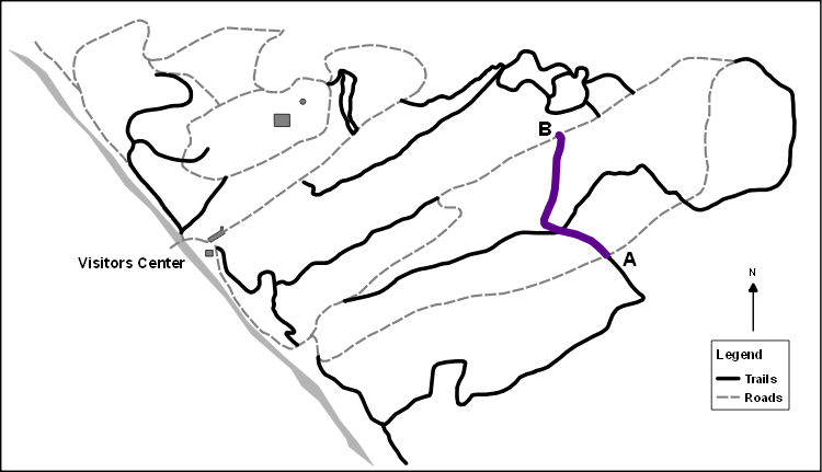 Slice Cross Roads