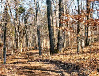 Cemetery Ridge Trail