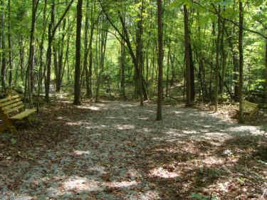 Cross Roads Trail