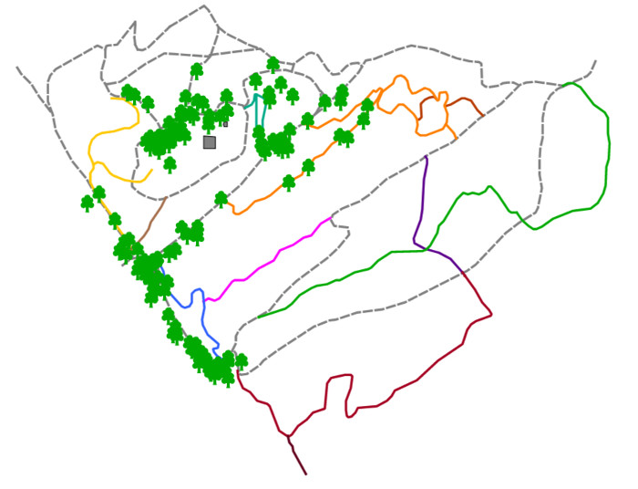 Urban Interactive Trees Map