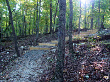 Lost Chestnut Trail