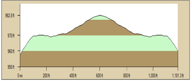 Profile Tulip Spur